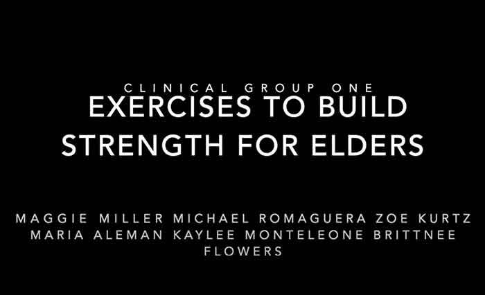 Elder-Excersizes-to-build-strength-for-eldersgerontology-fransician-university